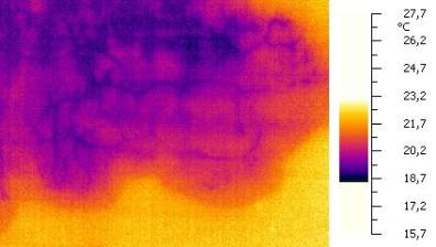 infiltrazioni termografia como lecco